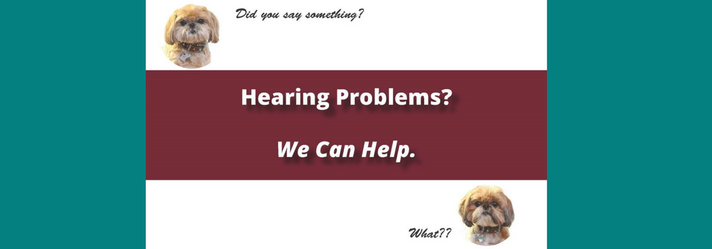 hearing problems banner s9098